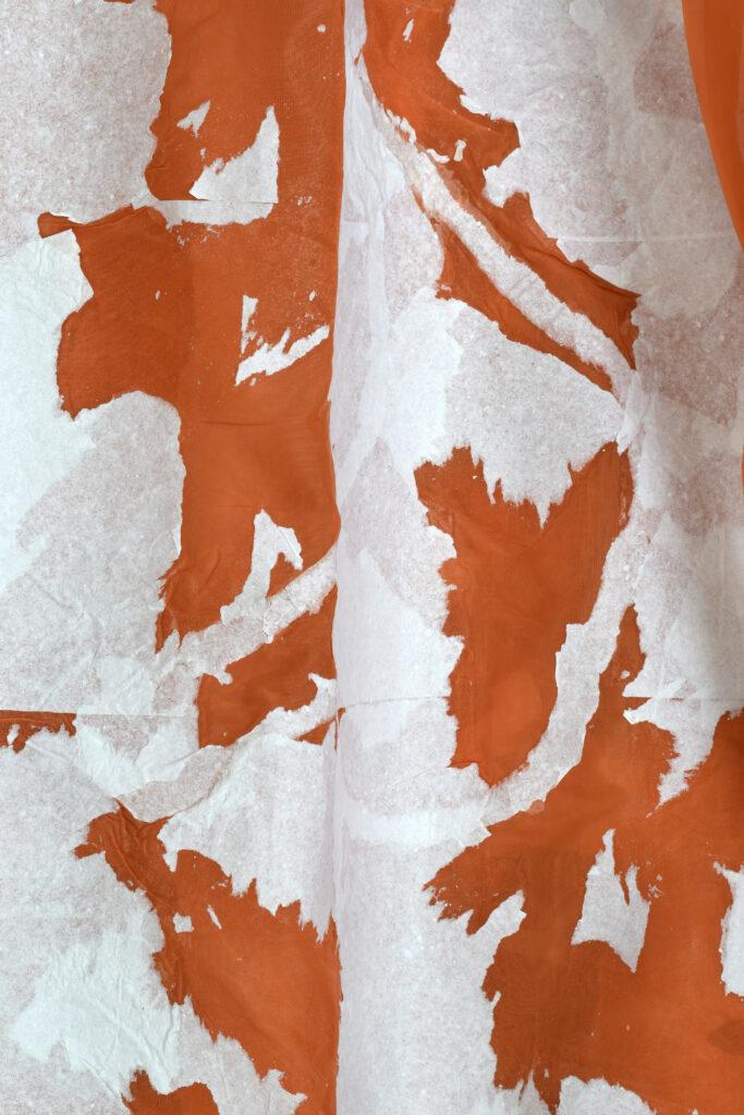 Detail: Olga Jakob, 'Mottenvögel & Sonnenschwärmer, Silk paper on fabrik